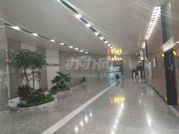 银峰大厦(生命人寿大厦)电梯厅
